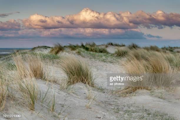 sanddüne, wolkengebilde, dämmerung - meerlandschaft stock-fotos und bilder