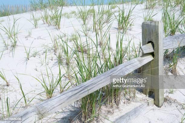 sand dune, fence - arthur foto e immagini stock