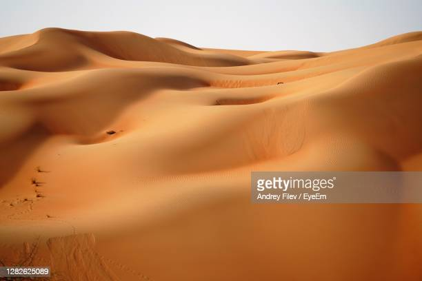 sand dune in desert against sky - united arab emirates stock pictures, royalty-free photos & images