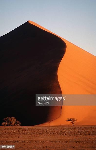 Dune de sable dans le désert du Namib