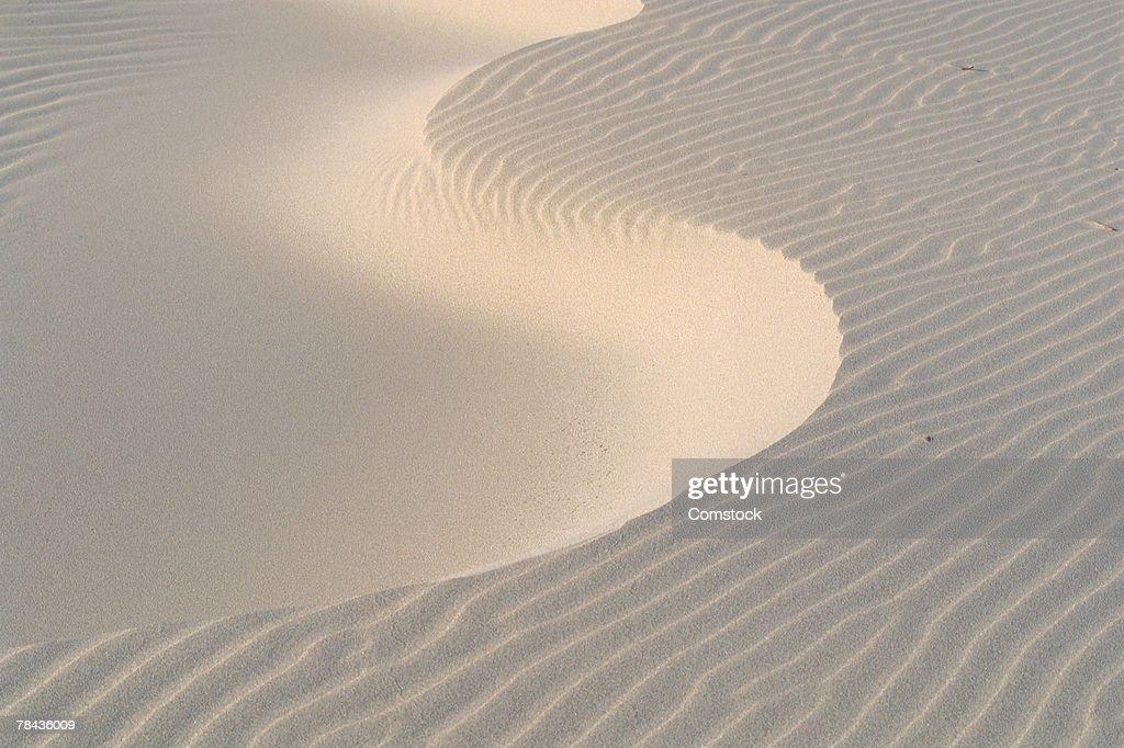 Sand dune on beach of Oregon coast : Stockfoto