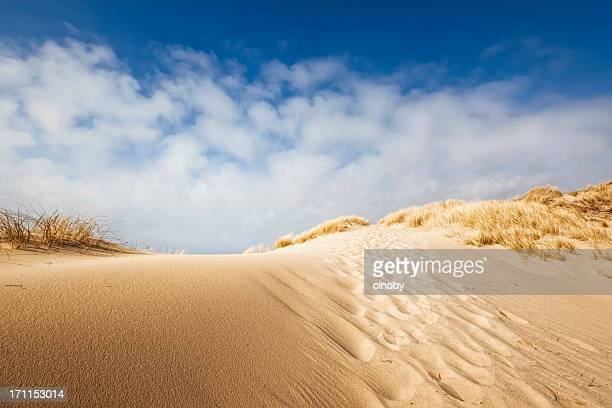 Sand dune on the coast of Sylt