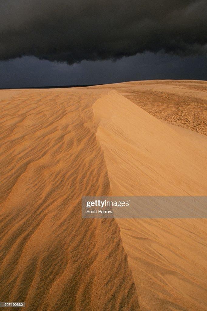Sand dune : Stock Photo
