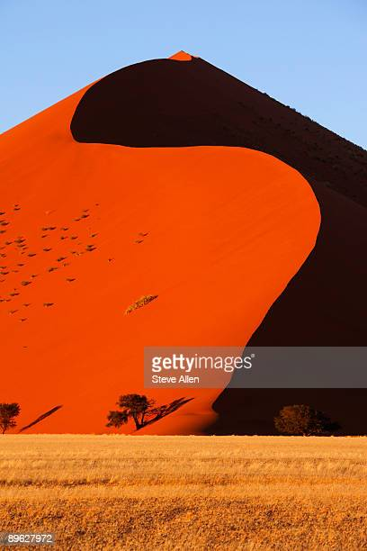 sand dune  - sossusvlei stockfoto's en -beelden