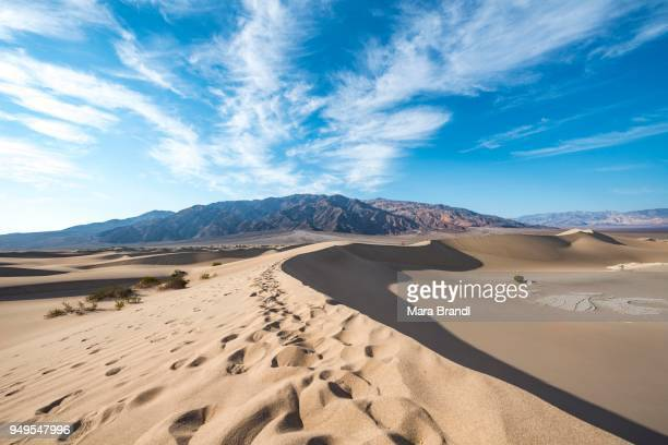 Sand dune tracks, Mesquite Flat Sand Dunes, Amargosa Mountain Range foothills, Death Valley National Park, California, USA