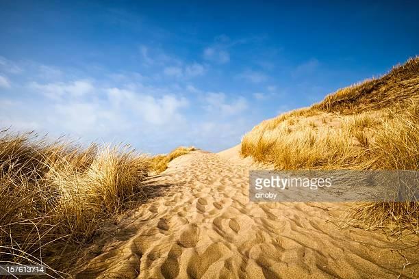 Sand Dune Fahrt
