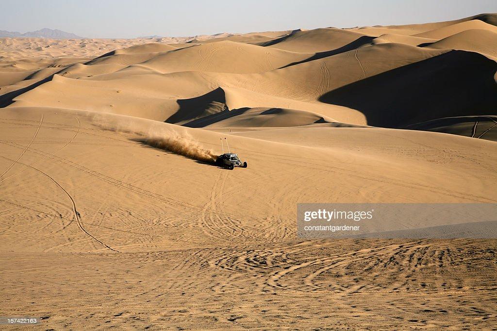 Sand Dunes Adventure : Stock Photo