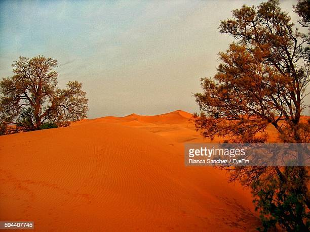 sand dunes against sky at merzouga - merzouga stock pictures, royalty-free photos & images