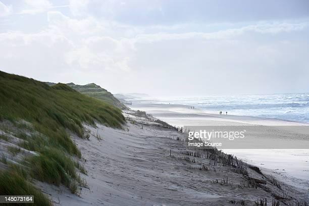 Sand dunes und Strand der Insel Sylt, Schleswig-Holstein, Deutschland