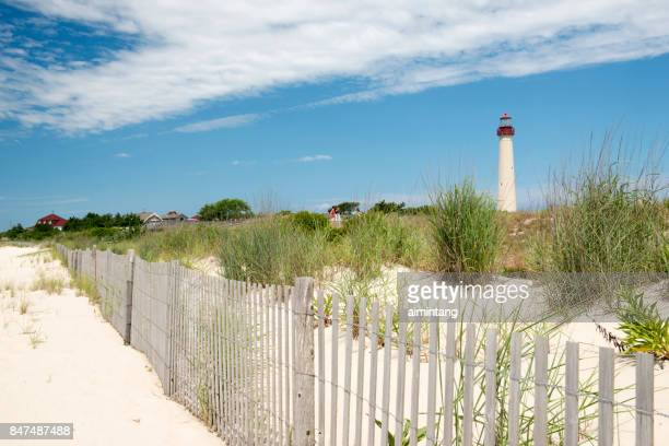 Sand Dunes and Fence at Cape May Point Stat Park