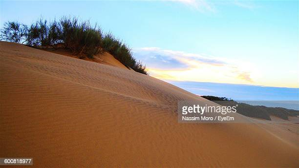 sand dunes at beach against sky - oran algeria photos et images de collection