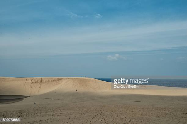 sand dunes at beach against sky - tottori prefecture stock photos and pictures