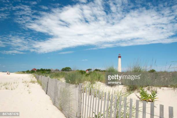 sand dunes at cape may point state park - cape may stock pictures, royalty-free photos & images