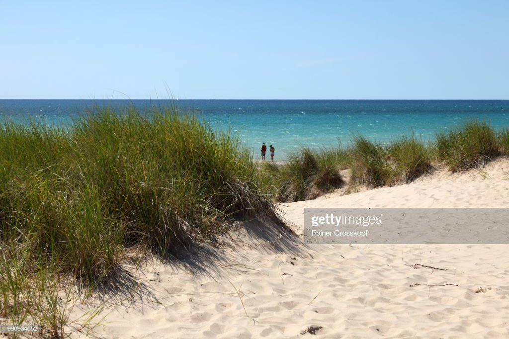 Sand dunes at coast of Lake Michigan : Stock-Foto