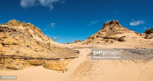 sand dunes at formby point, merseyside, england - merseyside stock pictures, royalty-free photos & images