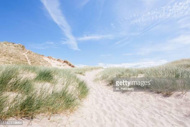 sand dunes at holywell beach - duna de arena fotografías e imágenes de stock