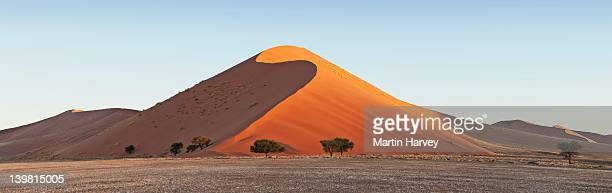 sand dunes at sossusvlei in the namib desert. namib-naukluft national park, namibia, africa - ナミブ砂漠 ストックフォトと画像