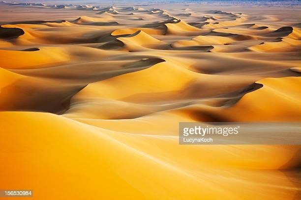 sand dunes at sunrise - egypt stock pictures, royalty-free photos & images