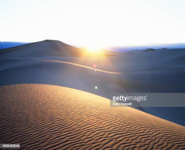 sand dunes at sunset - yeowell stock pictures, royalty-free photos & images