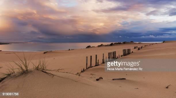 sand dunes at  valdevaqueros  beach on sunset in tarifa, cadiz, andalucia, southern spain, europe - cádiz fotografías e imágenes de stock
