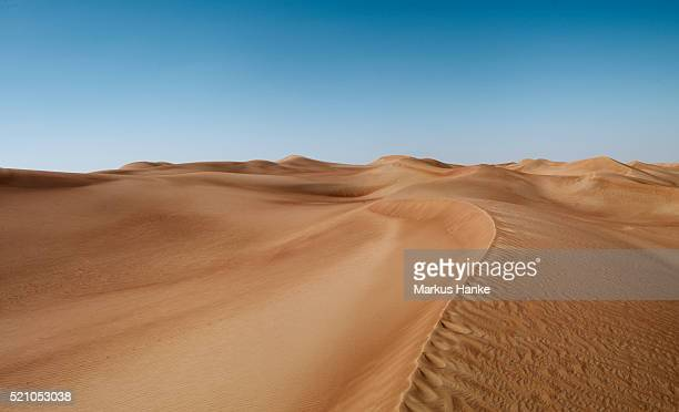 Sand dunes, Dubai, United Arab Emirates