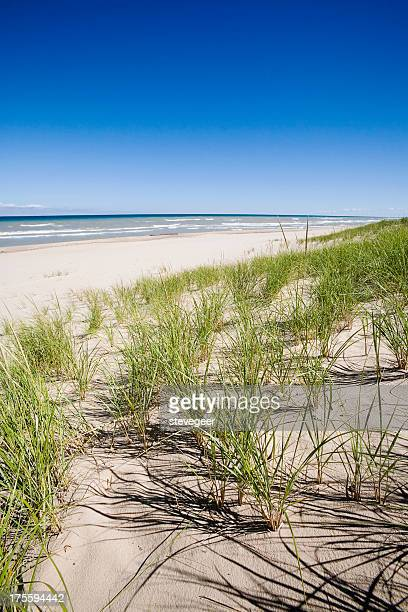 sand dunes, grass and lake - indiana dunes national lakeshore stock photos and pictures
