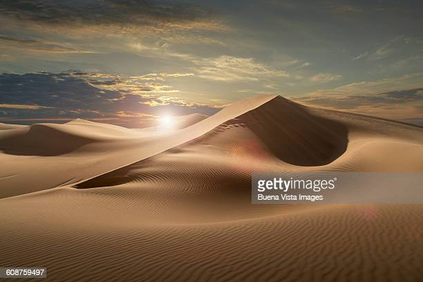 Sand dunes in a desert at sunset