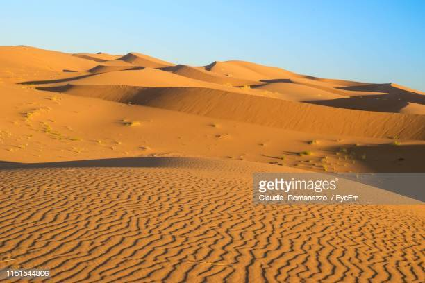 sand dunes in desert against clear sky - claudia romanazzo foto e immagini stock