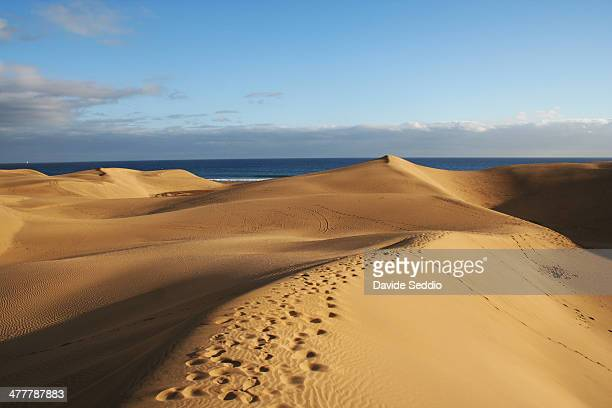sand dunes in gran canaria - grand canary stock pictures, royalty-free photos & images