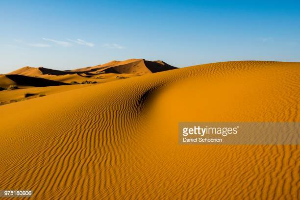 sand dunes in morning light, merzouga, meknes-tafilalet region, morocco - merzouga stock pictures, royalty-free photos & images