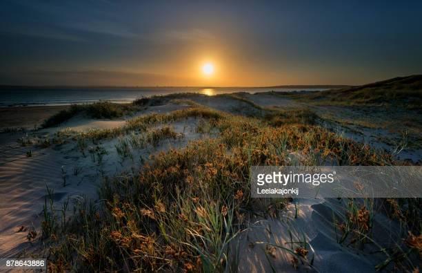 Sand dunes in NSW Australia