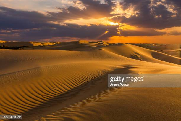 sand dunes in the desert at sunset - qatar stock pictures, royalty-free photos & images