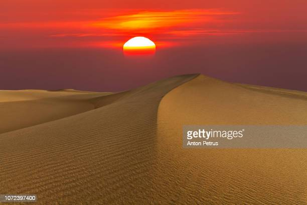 Sand dunes in the desert at sunset