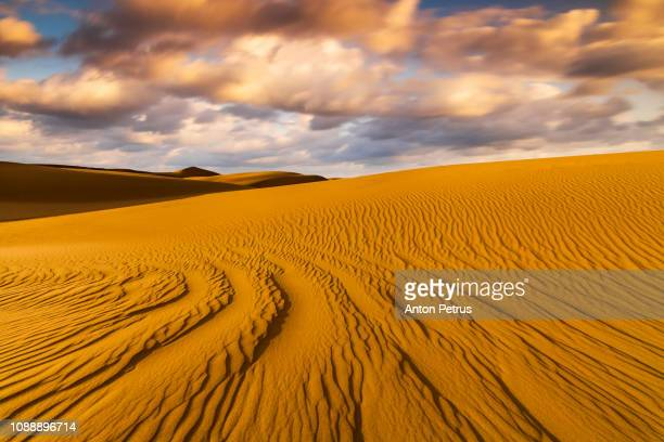 sand dunes in the desert at sunset - dramatic sky stock pictures, royalty-free photos & images