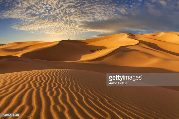 sand dunes in the desert at sunset - gobi desert stock pictures, royalty-free photos & images