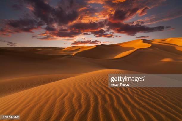 sand dunes in the desert at sunset - duna foto e immagini stock