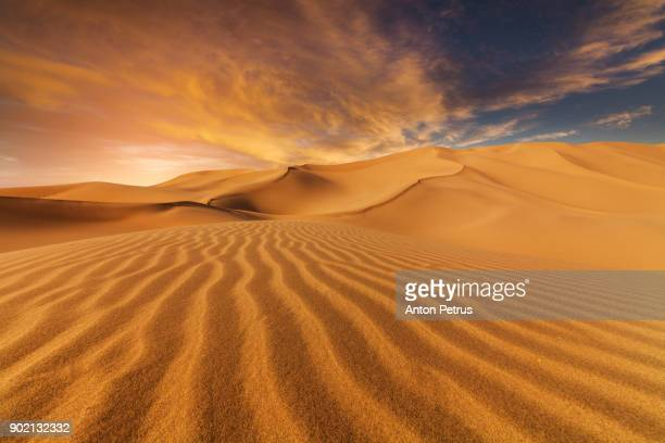sand dunes in the desert at sunset - desert stock pictures, royalty-free photos & images