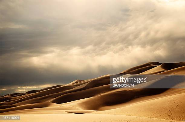 sand dunes in the late afternoon sun - great sand dunes national park stock pictures, royalty-free photos & images