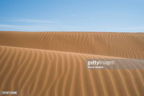 sand dunes in the sahara desert, at tindouf, algeria - アルジェリア ストックフォトと画像