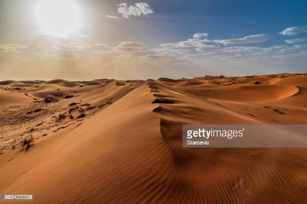 sand dunes in the sahara desert - morocco - middle east stock pictures, royalty-free photos & images