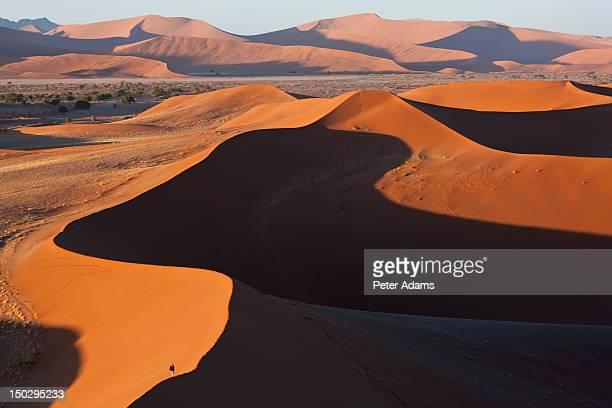 Sand Dunes, Namib Naukluft National Park, Namibia