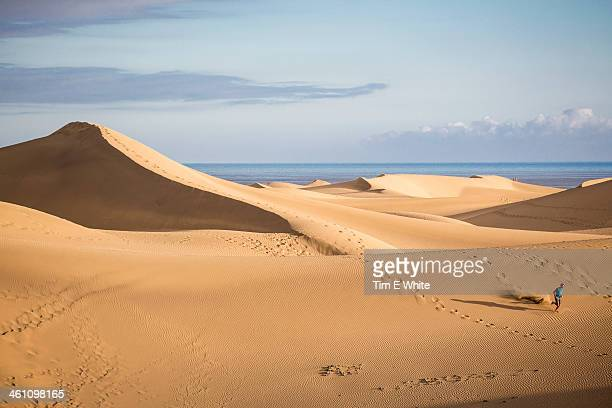 sand dunes of maspalomas, gran canaria, spain - grand canary stock pictures, royalty-free photos & images