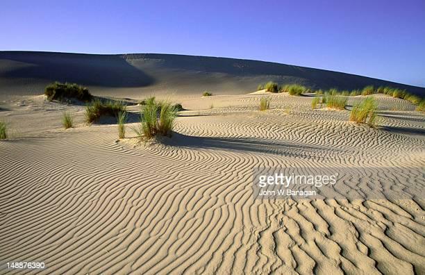 Sand dunes of the Little Sahara Desert on Kangaroo Island