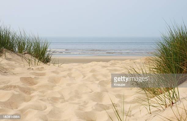 Sand dunes on beach at north sea