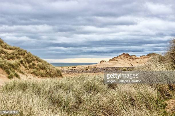 sand dunes on scotland's east coast - rattray head stock pictures, royalty-free photos & images