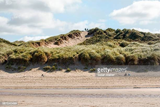 sand dunes - file:sand_dunes.jpg stock pictures, royalty-free photos & images