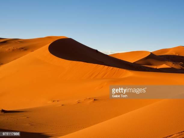 Sand dunes under clear sky, Erg Chebbi, Sahara, Morocco