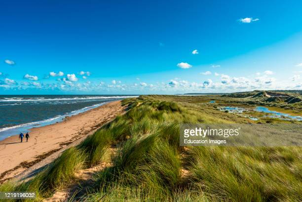 Sand dunes where Norfolk Coast path National Trail from Barnham Overy Staithe reaches the sea at Holkham Bay, East Anglia, England, UK.