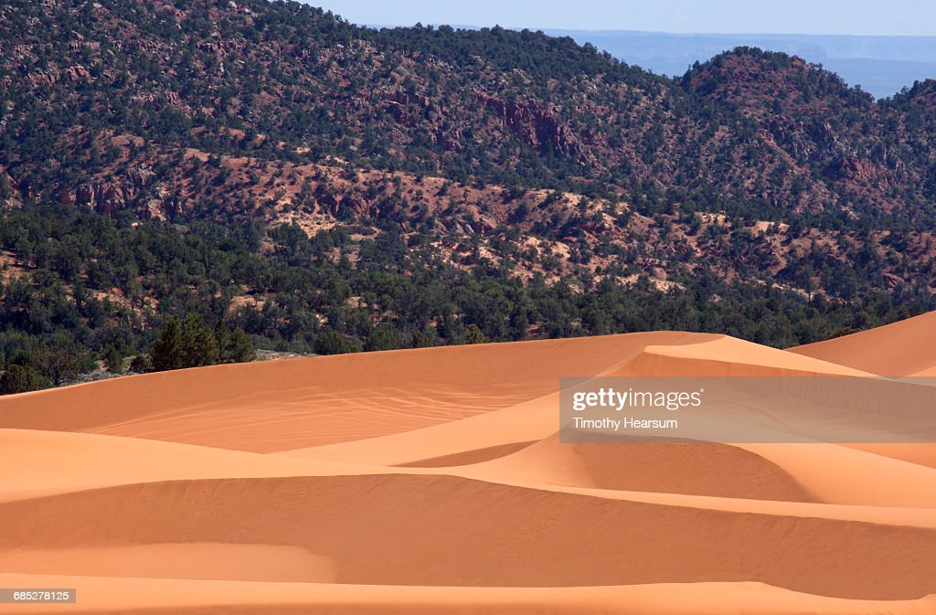 Sand dunes with mountains and sky beyond : Stock Photo