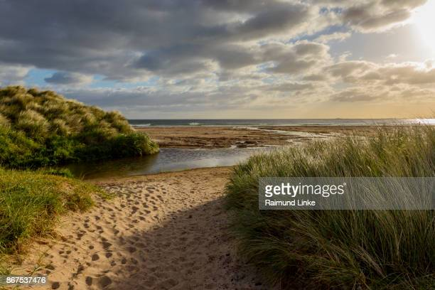 sand dunes with sea and little river, bamburgh, north sea, northumberland, united kingdom - northumberland stock photos and pictures